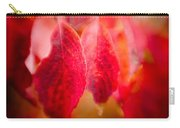 Fall Colors 0666 Carry-all Pouch