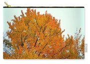 Fall Colors 2014-11 Carry-all Pouch