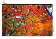 Fall Colors 2014-4 Carry-all Pouch