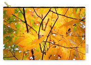 Fall Colors 2014-7 Carry-all Pouch