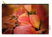 Fall Colors 6675 Carry-all Pouch
