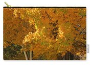 Fall Colors Carry-all Pouch by Adam Romanowicz