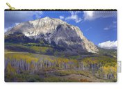 Fall Colors At Gunnison National Forest Carry-all Pouch