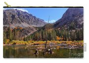 Fall Colours Reflection Carry-all Pouch