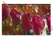 Fall Dogwood Leaves Carry-all Pouch