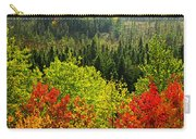 Fall Forest Rain Storm Carry-all Pouch by Elena Elisseeva