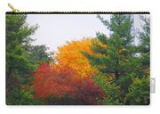 Fall Geese Of Washington Carry-all Pouch