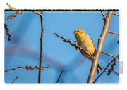 Fall Goldfinch Carry-all Pouch