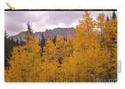Fall In Maroon Bells Carry-all Pouch