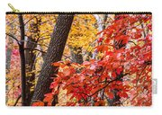 Fall In The Forest Carry-all Pouch