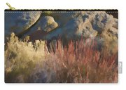 Fall In The Santa Rosas Carry-all Pouch by Scott Campbell