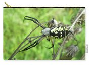 Fall Meadow Spider - Argiope Aurantia Carry-all Pouch