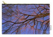 Fall Reflections By Diana Sainz Carry-all Pouch