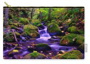 Fallen Leaves On The Rocks Carry-all Pouch