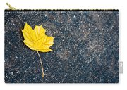 Fallen Carry-all Pouch by Sebastian Musial