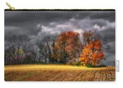 Falling Into Winter Carry-all Pouch by Lois Bryan