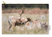 Fallow Deer - Amazing Antlers Carry-all Pouch