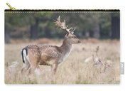 Fallow Deer Buck On Guard  Carry-all Pouch