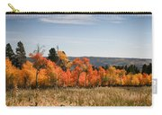 Fall's Splendor - Casper Mountain - Casper Wyoming Carry-all Pouch
