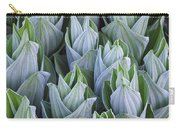 False Hellebore With Frost Colorado Carry-all Pouch