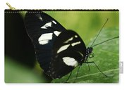 False Zebra Longwing Butterfly Carry-all Pouch