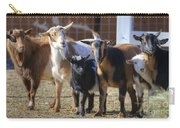 Fancy Goats Carry-all Pouch