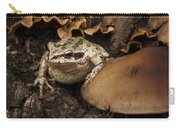 Fat Frog Carry-all Pouch by Jean Noren