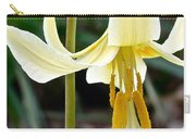 Fawn Lily Carry-all Pouch