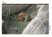 Fawn Resting On Beach Carry-all Pouch