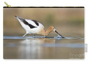Feeding Avocet Carry-all Pouch