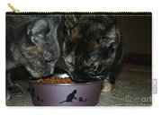 Feline Friends Carry-all Pouch