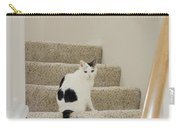 Feline On Stairs Carry-all Pouch