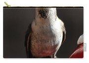 Female Anna Hummingbird Carry-all Pouch