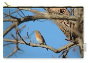 Female Bluebird Carry-all Pouch