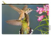 Female Broad-tailed Hummingbird Carry-all Pouch