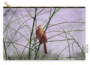 Female Cardinal In Willow Carry-all Pouch