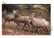 Female Desert Bighorn Sheep Carry-all Pouch