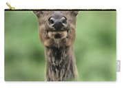Female Elk Portrait Yellowstone National Park Wyoming Carry-all Pouch