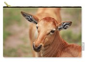 Female Impala Carry-all Pouch