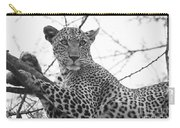 Female Leopard Carry-all Pouch