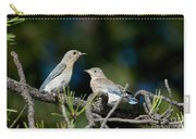 Female Mountain Bluebird With Fledgling Carry-all Pouch