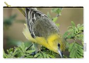Female Orchard Oriole Carry-all Pouch