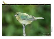 Female Painted Bunting Passerina Ciris Carry-all Pouch
