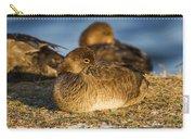 Female Readhead Duck Carry-all Pouch