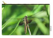 Female Widow Skimmer Carry-all Pouch
