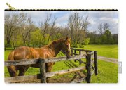 Fences Carry-all Pouch