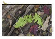Fern And Maple Leaves Maine Img 6182 Carry-all Pouch