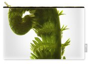 Fern Curve Carry-all Pouch
