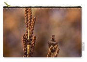 Fern Spore Stalk In Morning 2 Carry-all Pouch
