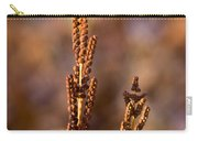 Fern Spore Stalk In Morning Sun Carry-all Pouch